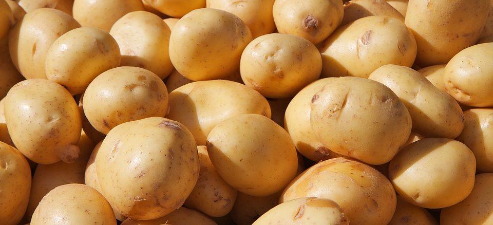 Kartoffel Kartoffelsaft
