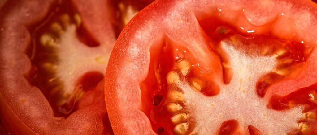 Tomaten für Tomatensaft